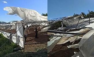 Alanya'da fırtına seralara zarar verdi