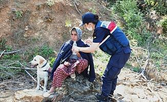 Kayıp olarak aranan kadın ormanlık alanda bulundu