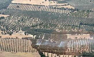 Alexandria Troas Antik Kentinde yangın