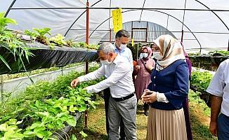 Çınar, kadın girişimcileri sera alanında ağırladı