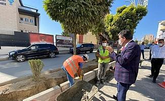 Başkan Yarka Şırnak'ta devam eden çalışmaları inceledi