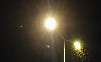 Bingöl'de ilçeyi sinekler bastı, esnaf iş yerini kapattı
