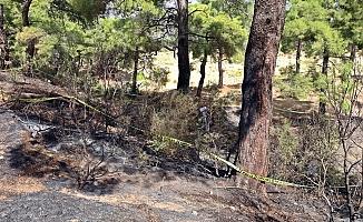 Ormanda yanmış halde cesedi bulunan eski CHP ilçe başkanının katil zanlısı yakalandı