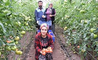 Türkiye'nin sebze meyve deposu Antalya'da kısıtlama sebze meyve üretimine engel olmadı