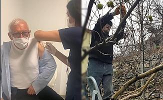 Alanyalı siyasetçi aşıyı vurundu, soluğu bahçede aldı