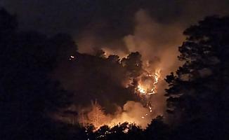 Trabzon'un Of ilçesinde örtü yangınları