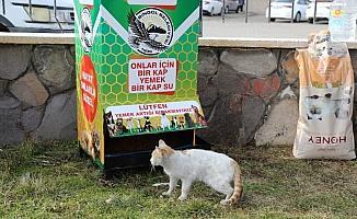 Bingöl'de  12 noktaya mamamatik yerleştirildi