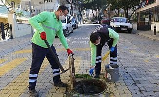 Efeler Belediyesi kent zararlıları ile mücadele ediyor