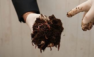 Ekonomiye katkı çevreye fayda sağlıyor, 100 ton gübre üretiliyor