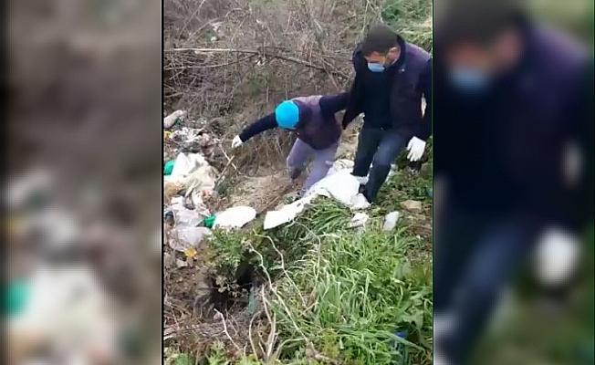 Ayaklarından bağlayıp çuvala koydukları köpeği ölüme terk ettiler