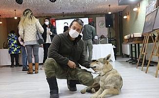 Evcilleştirdiği kurdu salonda sergiledi