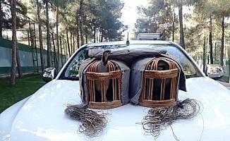 Şanlıurfa'da kaçak keklik avlayan şahıs suçüstü yakalandı