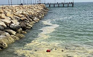 Deniz yüzeyi sarıya boyandı, Büyükşehir Belediyesi açıklama yaptı: 'Korkmayın'