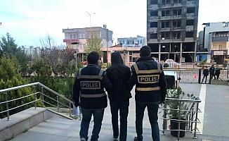 Kahta'da hırsızlık zanlısı tutuklandı