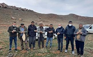 Sivas'ta 248 keklik markalandı