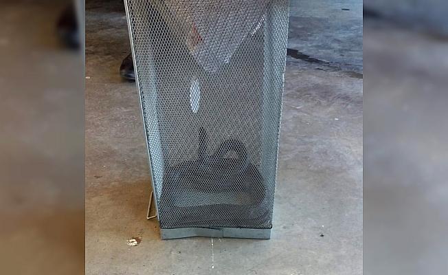 Bahçede görülen yılanı itfaiye yakaladı
