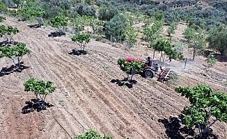 Çiftçiler gününü tarlada çalışarak geçirdiler