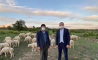 Kaymakam Pelvan: ''Aslanapa'da hayvancılık en önemli gelir kaynağı''