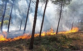 Ormanlık alandaki yangına zamanında müdahale