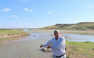 Sifon bozuldu 20 bin dönüm arazi susuz kaldı