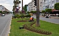 Büyükşehir'den Alanya'ya 300 bin çiçek