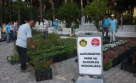 Alanya Belediyesi 21 mezarlıkta 42 bin çiçek dağıtacak