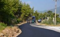 Büyükşehir'den Alanyaspor taraftarına kaymak gibi yol
