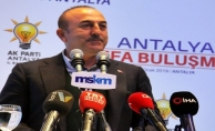 """Bakan Çavuşoğlu: """"Siz geçmişte de Kürtleri kullandınız"""""""