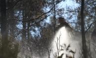 Alanya'da orman yangın korkuttu!