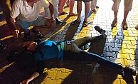 Alanya'da kaza! Motosiklet sürücüsü kadın yaralandı