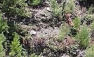 Alanya'da kontrolden çıkan araç 100 metreden uçtu: 1 ölü
