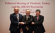 Çavuşoğlu'ndan ASEAN mesajı