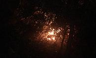 Alanya'da 4 dönümlük arazi yandı!