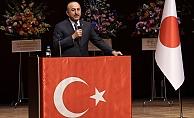 Japon Büyükelçi'den nişan açıklaması: Bakan Çavuşoğlu en yükseğiyle taltif edildi