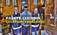 Alanya'da işçileri 2 milyon 100 bin TL dolandıran şüpheli yakalandı