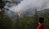 Orman yangınında hızlı müdahale büyümeyi önledi