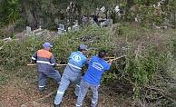 Alanya'da mezarlıklar temizlendi