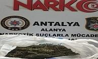 Alanya'da zehir tacirleri yakalandı