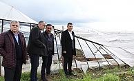 MHP'li Türkdoğan'dan fırtına mağduru çiftçilere ziyaret
