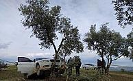 Aracını kaçıran genci öldüren şahıs tutuklandı