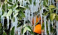 Alanya'da hava haftaya 0 dereceyi görecek!