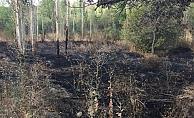 Alanya'da 85'lik dede otları yakmak isterken bahçesini yaktı!