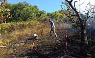 Alanya'da bahçesindeki otları temizlerken ormanı yakıyordu!