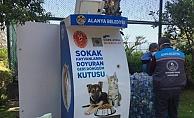 Alanya'da sokak hayvanları için yeni beslenme üniteleri