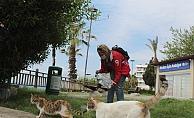 Sessizliğe bürünen kentte karı-koca özel izinle sokak hayvanlarını besledi