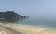 Alanya'nın denizinde şaşırtan manzara!