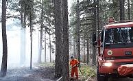 Alanya Kuşyuvası'nda orman yangını!