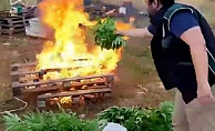 Ele geçirilen kenevirler yakılarak imha edildi