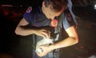 Motora sıkışan yavru kediyi itfaiye kurtardı
