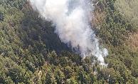 Orman yangını faciaya dönmeden söndürüldü
